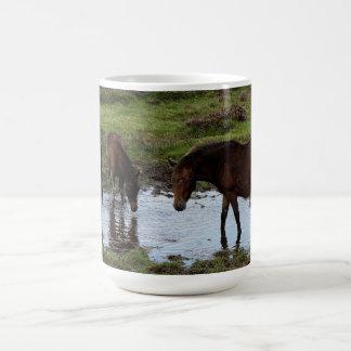 水たまりで飲んでいるDartmoorの3頭の子馬 コーヒーマグカップ