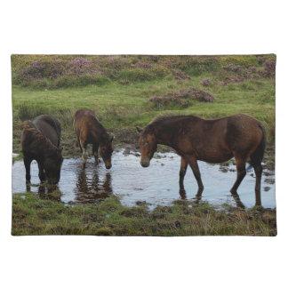 水たまりで飲んでいるDartmoorの3頭の子馬 ランチョンマット