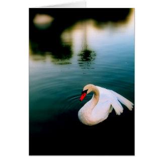 水に優美 カード