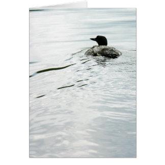 水に共通の水潜り鳥 カード