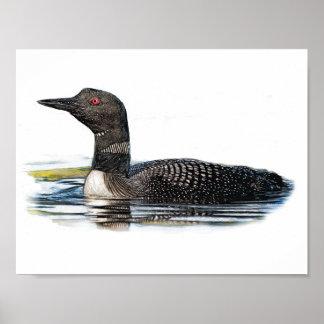 水に水潜り鳥 ポスター