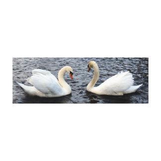 水に白鳥 キャンバスプリント