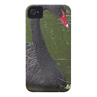 水に豪華な黒鳥 Case-Mate iPhone 4 ケース
