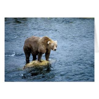 水のアメリカ人のヒグマ カード