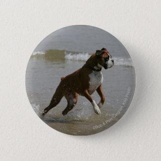 水のボクサー犬 5.7CM 丸型バッジ
