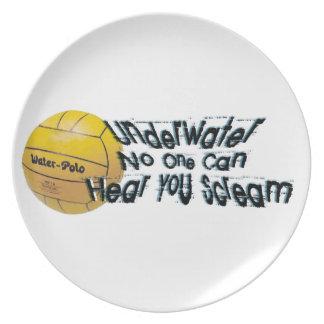 水の下で誰もプレートを叫ぶのを聞くことができません 皿