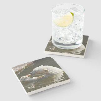 水の白くまの食べ物のフルーツ ストーンコースター
