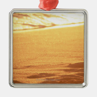 水の端(夕べ) 3 シルバーカラー正方形オーナメント