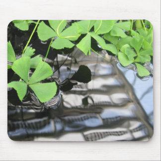 水の緑の葉 マウスパッド