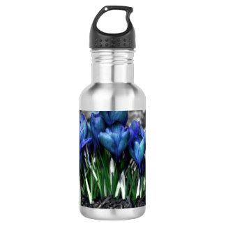 水の青いクロッカスの開花 ウォーターボトル