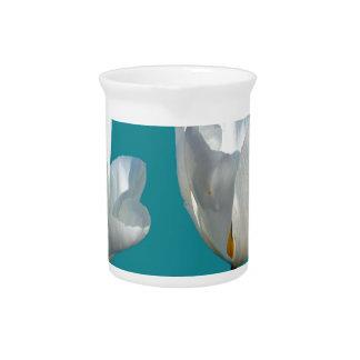 水の青の背景の白いチューリップの花 ピッチャー