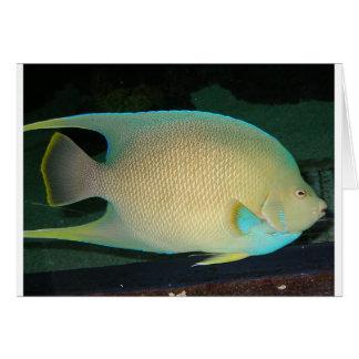 水の青タン緑の熱帯魚の水泳 カード