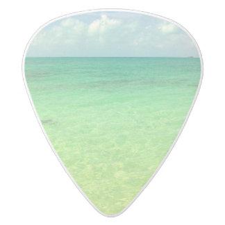 水のCaicosの緑の海 のトルコ人および写真 ホワイトデルリン ギターピック