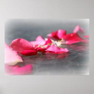 水ポスターの浮遊ピンクのバラの花びら ポスター