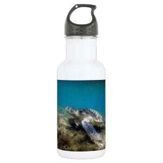 水中にリラックスしている緑のウミガメ ウォーターボトル
