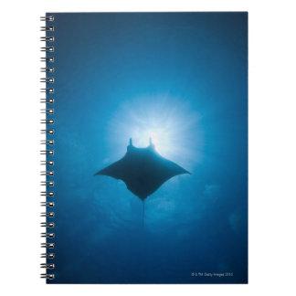 水中に泳ぐマンタ ノートブック