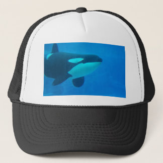 水中のシャチのシャチの青 キャップ