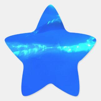 水中イルカ 星シール