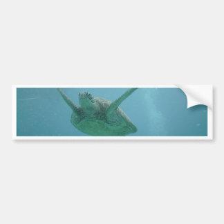 水中ウミガメ バンパーステッカー