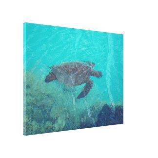 水中カメのKiholo湾のハワイのキャンバスのプリント キャンバスプリント