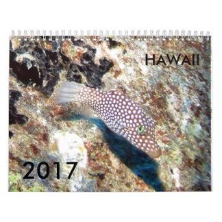 水中ハワイ -- 2017カレンダー カレンダー