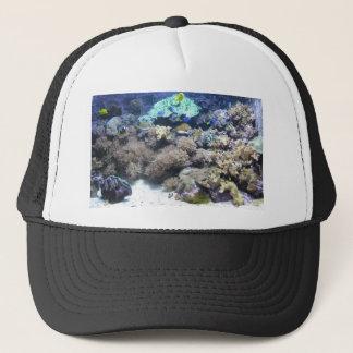 水中写真撮影-多彩な熱帯魚 キャップ