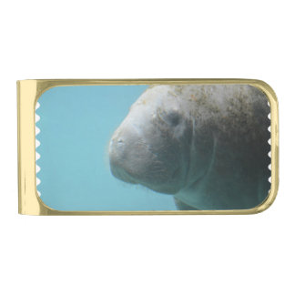 水中大きいマナティー ゴールド マネークリップ