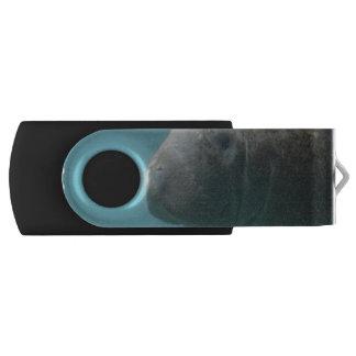 水中大きいマナティー USBフラッシュドライブ