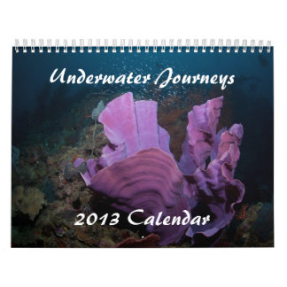 水中旅行2013の海洋生物のカレンダー カレンダー