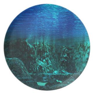 水中景色のプレート プレート