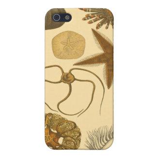 水中海の創造物 iPhone SE/5/5sケース