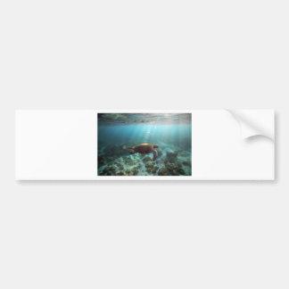 水中海の礁湖を泳いでいるウミガメ バンパーステッカー
