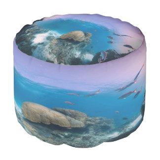 水中海場面円形のPouf プーフ