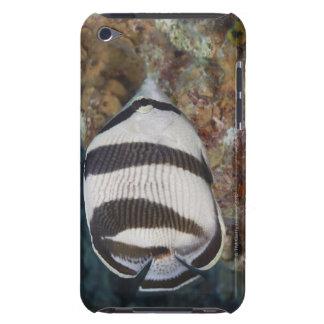 水中生命; 魚: バンドを付けられたButterflyfish Case-Mate iPod Touch ケース