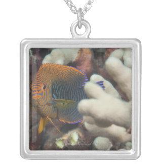 水中生命; 魚: 陶工のポートレート シルバープレートネックレス