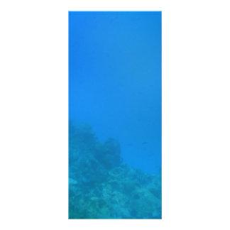 水中背景場面 ラックカード