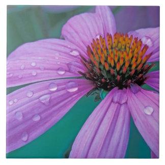 水低下の紫色の円錐形の花 タイル