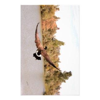 水写真上の飛んでいるなアヒル 便箋