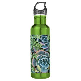 水差しの美しいサボテンは緑の草木に混合しました ウォーターボトル