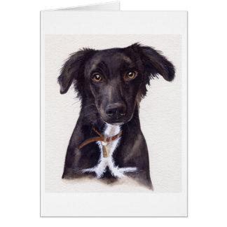 水彩画で絵を描かれる若いコリー犬 カード