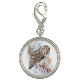 水彩画のカラフトフクロウの鳥の自然の芸術 チャーム