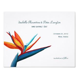水彩画の保存極楽鳥日付カード 10.8 X 14 インビテーションカード