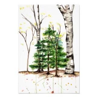 水彩画の木のプリント フォトプリント