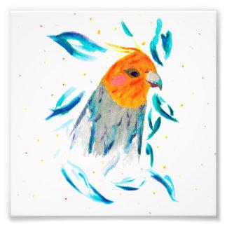 水彩画の芸術のプリント[Boei 737] cockatiel フォトプリント