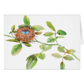 水彩画の鳥の巣 カード