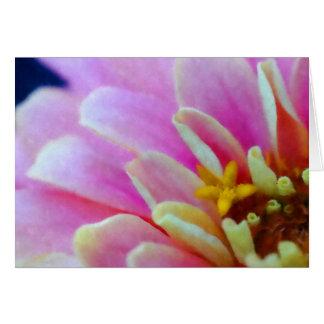 水彩画の《植物》百日草の挨拶状 カード