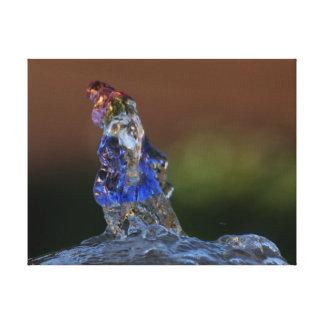 水格言-ファインアートのデジタル写真-キャンバス キャンバスプリント