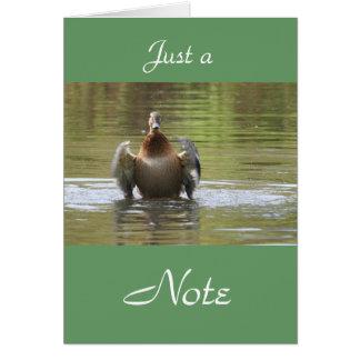 水歩くのマガモ カード