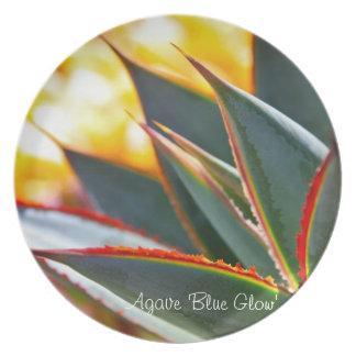 水気が多い植物のディナー用大皿: リュウゼツラン「青いGlow プレート