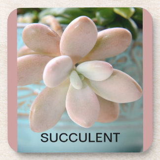 水気が多いSedumのピンクのゼリー菓子の植物 コースター